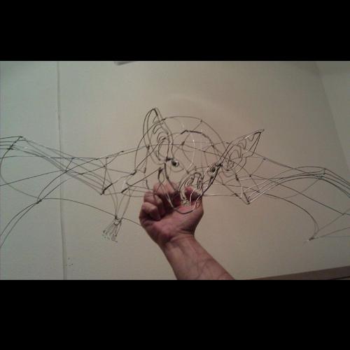 Vampire Bat 1